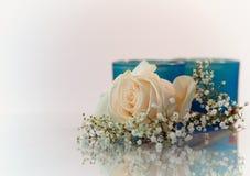 Blumen auf weißem Hintergrund Stockfotos