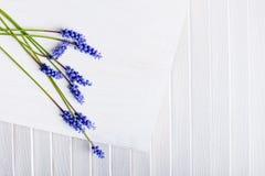 Blumen auf weißem Holz Stockbild