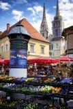 Blumen auf Zagreb-` s Markt Lizenzfreies Stockbild