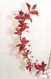 Blumen auf Zweig Stockfotografie