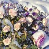 Blumen bedeckt mit Schnee und verwelkt Zur?ckgewiesene Liebe Falsches Datum stockfoto