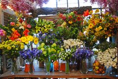 Blumen bei Bloemenmarkt in Amsterdam Stockfotografie