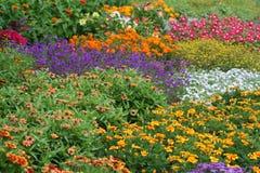 Blumen-Bett Lizenzfreie Stockbilder