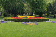 Blumen-Bett in einem formalen Garten Stockbild