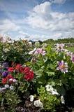 Blumen-Betten - landschaftlich verschönerter Garten Stockbild