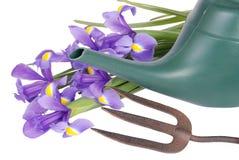 Blumen, Bewässerungsdose u. Gabel Lizenzfreie Stockfotos