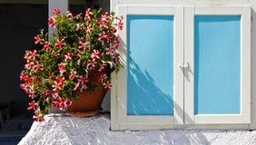 Blumen am blauen Fenster Stockfotografie