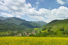 Blumen, blauer Himmel und Berg Stockfotografie