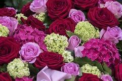 Blumen-Blumenstrauß im Rosa und im Rot Stockbild