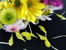 Blumen-Blumenstrauß mit den gefallenen Blumenblättern Lizenzfreie Stockbilder