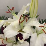 Blumen-Blumenstrauß romantisch Lizenzfreie Stockfotografie