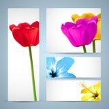 Blumen-Broschüre-Natur-Schablone Stockfotos