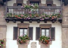 Blumen in den Fenstern stockbild