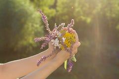 Blumen in den Händen Stockbild
