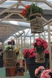 Blumen in den Körben Lizenzfreies Stockfoto
