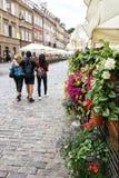 Blumen in den Töpfen nahe bei einem Café Lizenzfreie Stockfotografie