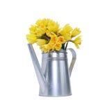 Blumen in der Bewässerungsdose Lizenzfreie Stockfotos