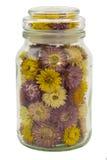 Blumen in der Flasche Lizenzfreie Stockfotos