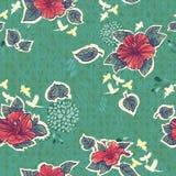 Blumen der Hibiscuse. Stockbilder