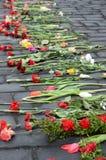 Blumen der Sorge auf den ukrainischen Straßen Lizenzfreie Stockfotos