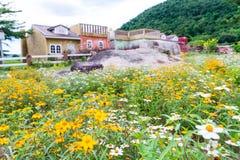 Blumen der spanischen Nadel im Garten Lizenzfreies Stockbild