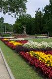 Blumen in der Stadt parken in der Mitte von Riga Stockbild
