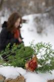 Blumen der Traurigkeit Lizenzfreie Stockfotos