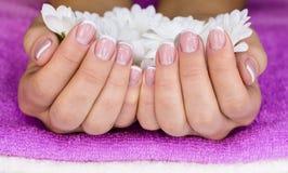 Blumen in der weiblichen Hand Lizenzfreie Stockfotos