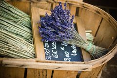 Blumen des Lavendels im Weidenkorb Lizenzfreies Stockfoto