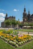 Blumen in Dresden stockbilder