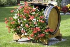 Blumen in einem hölzernen Faß Stockbild