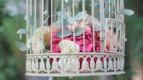 Blumen in einem Käfig des Vogels stock video footage