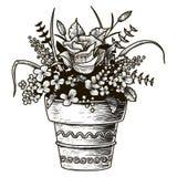 Blumen in einem Potenziometer Skizzenillustration Lokalisierter Vektor Stockfoto