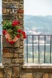 Blumen in einem Topf auf einer Steinwand unter der Lampe Stockbild
