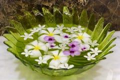 Blumen in einer Glasschüssel Lizenzfreies Stockfoto