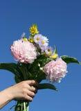 Blumen in einer Hand Stockbilder