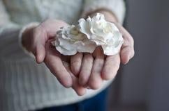 Blumen in einer Hand Lizenzfreie Stockbilder