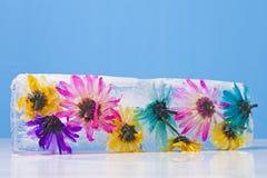 Blumen eingefroren im Eis-Block Stockbild