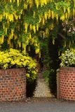 Blumen-Eintritt zum Haus mit orange Backsteinmauer lizenzfreie stockfotos