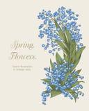 Blumen Eleganter Rahmen mit Blumen Weinlesevektorillustration Klassische Karte Lizenzfreie Stockfotografie