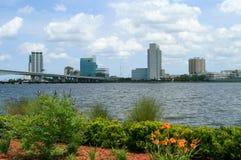 Blumen entlang dem Jacksonville Riverwalk Lizenzfreies Stockfoto