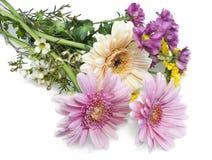 Blumen für die Freundin liegt auf weißer Tabelle Stockbilder