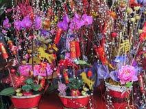 Blumen für Feier des Chinesischen Neujahrsfests Stockfotos