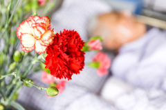 Blumen für Raum des Sorgfaltstationären patienten Stockfotos