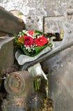 Blumen für Veterane Lizenzfreie Stockfotos