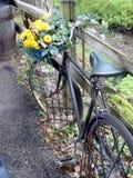 Blumen-Fahrrad Stockfoto