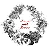 Blumen Feld blühende Rosen der Skizze auf einem purpurroten Hintergrund mit Streifen Gemüsemuster Botanisches Thema Lizenzfreie Stockfotos