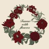 Blumen Feld blühende Rosen der Skizze auf einem purpurroten Hintergrund mit Streifen Gemüsemuster Botanisches Thema Lizenzfreies Stockfoto