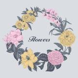 Blumen Feld blühende Rosen der Skizze auf einem purpurroten Hintergrund mit Streifen Gemüsemuster Botanisches Thema Stockbilder