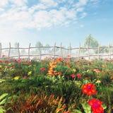 Blumen-Feld in Misty Morning Lizenzfreie Stockfotos